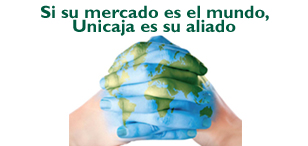 Asesoramiento internacional