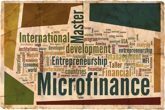 microcredit thesis Introduction a significant development in recent years has been the mushrooming of community-based organizations and initiatives at the local level for women.